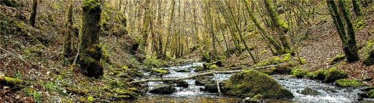 Ruisseau17.2
