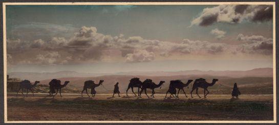 1919_Palestine_Caravane