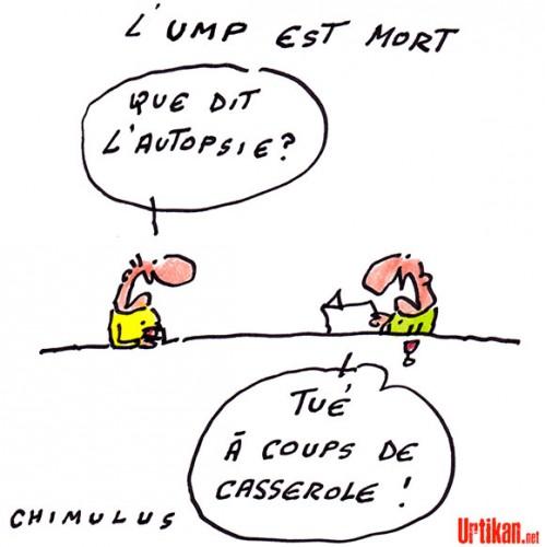 Chimulus UMP